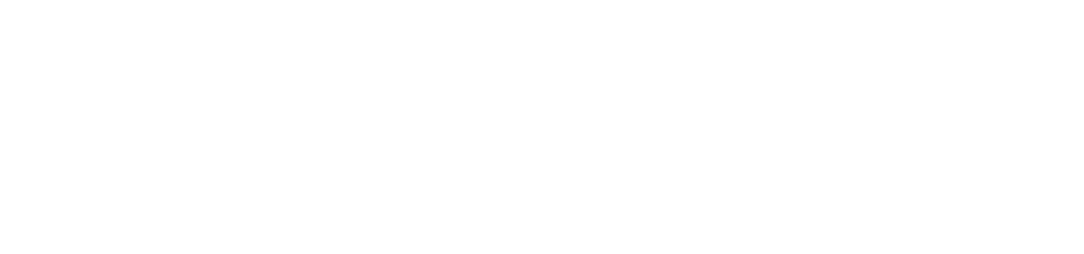 Weiss Realty LLC